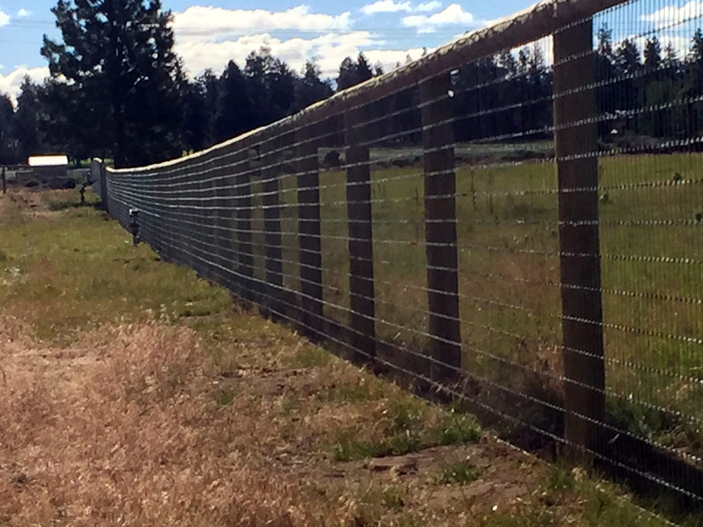 Pasture Fence With Mesh Screen Bend Fencing Cedar Chain Link