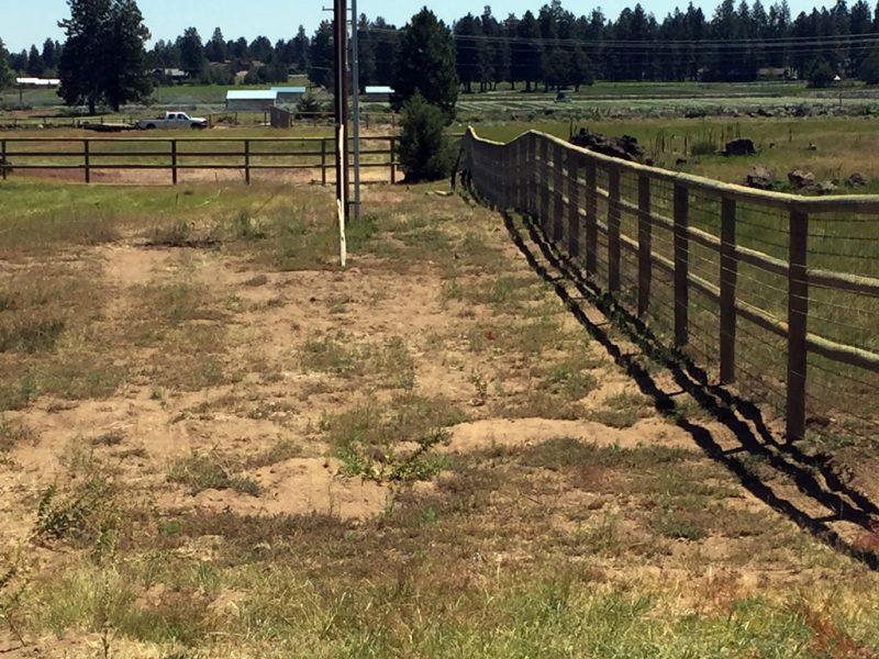 field-fence